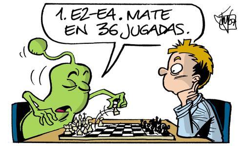 Bok canta un mate ó xadrez