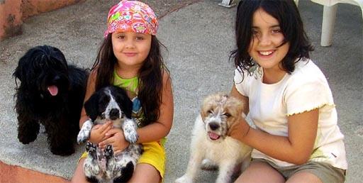 Paula cos cadelos