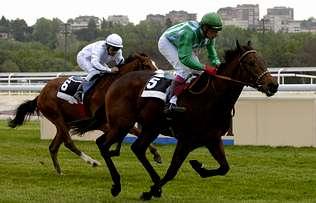 El caballo «Corcubión», en la imagen en cabeza, ganó una prueba en el hipódromo de la Zarzuela