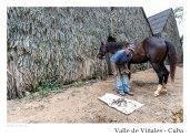 vinales_kuba_57