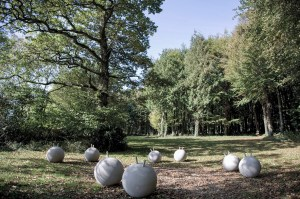 Portfolio: Marcus Kleinfeld, ANTIBODIES, 2010 Installation view CASS Sculpture Foundation