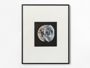 Marcus Kleinfeld, AEON, 2012 Collage 50 x 40 cm
