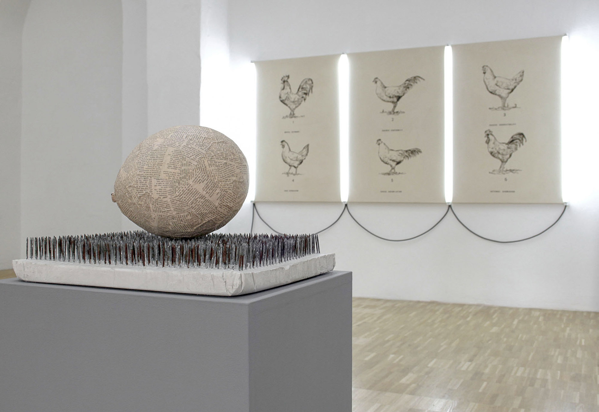 Marcus Kleinfeld, FORCES / SOCIAL FORMATION, 2011 Installation view