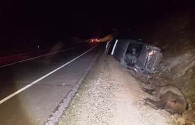 Ata çarpan hafif ticari araçtaki 3 kişi yaralandı