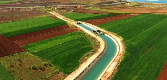 Sulanan arazilerden ekonomiye  2 milyar 888 milyon liralık katkı