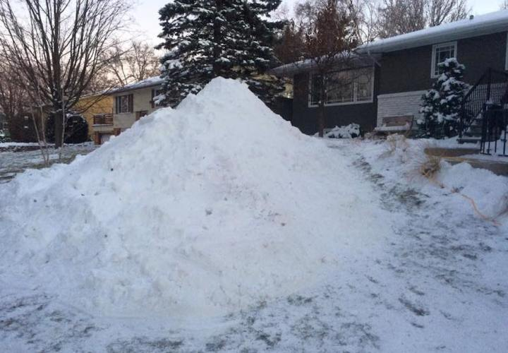 Giant Snow turtle before
