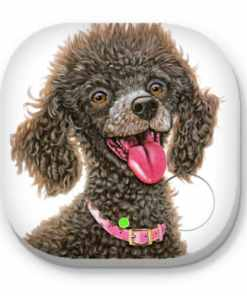 Chocolate poodle - PHONE AND KEY FINDER