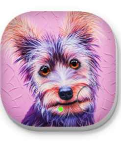 Silky Terrier- PHONE AND KEY FINDER