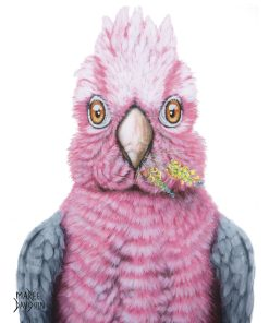 TRIXIE THE GALAH-FRAMED MATTED PRINTS-MAREE DAVIDSON