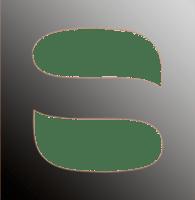 Regine Schadach Logo