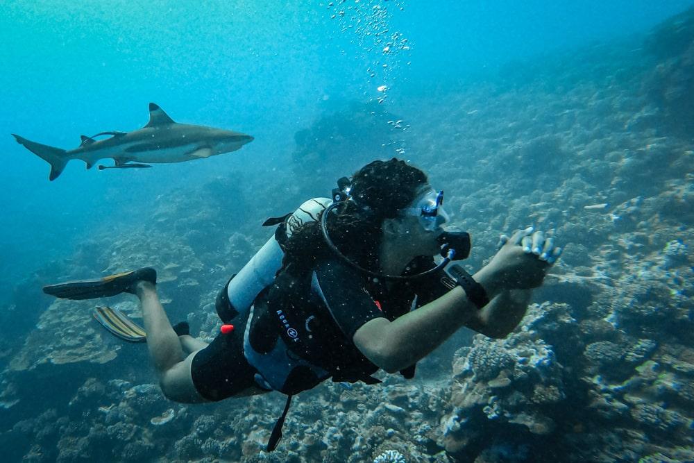 nurkowanie na polinezji francuskiej