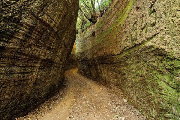 Escursioni guidate Settembre 2017 in Maremma Toscana