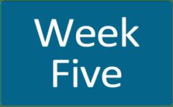 Week Five