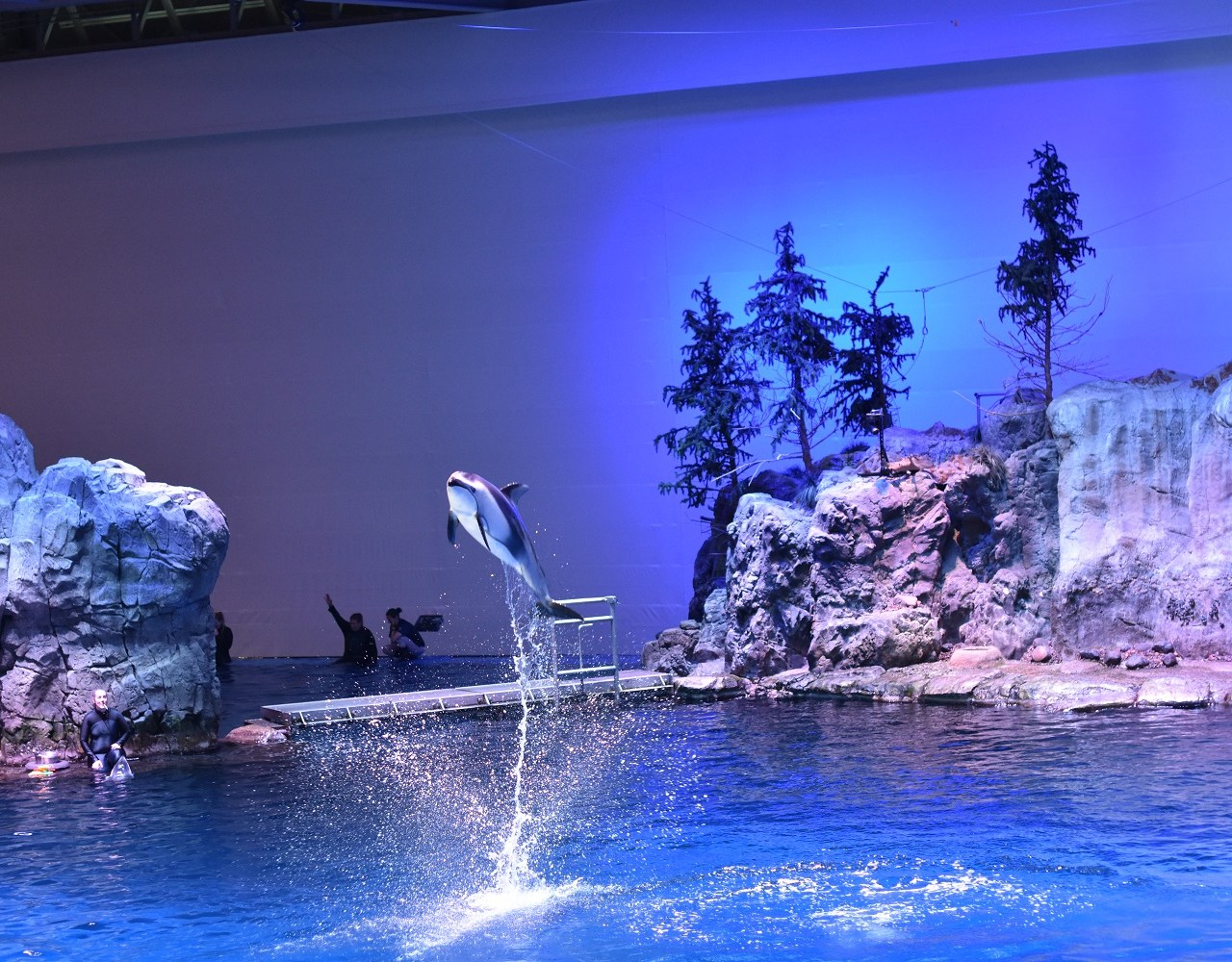 Shedd Aquarium With a Newborn & Toddler