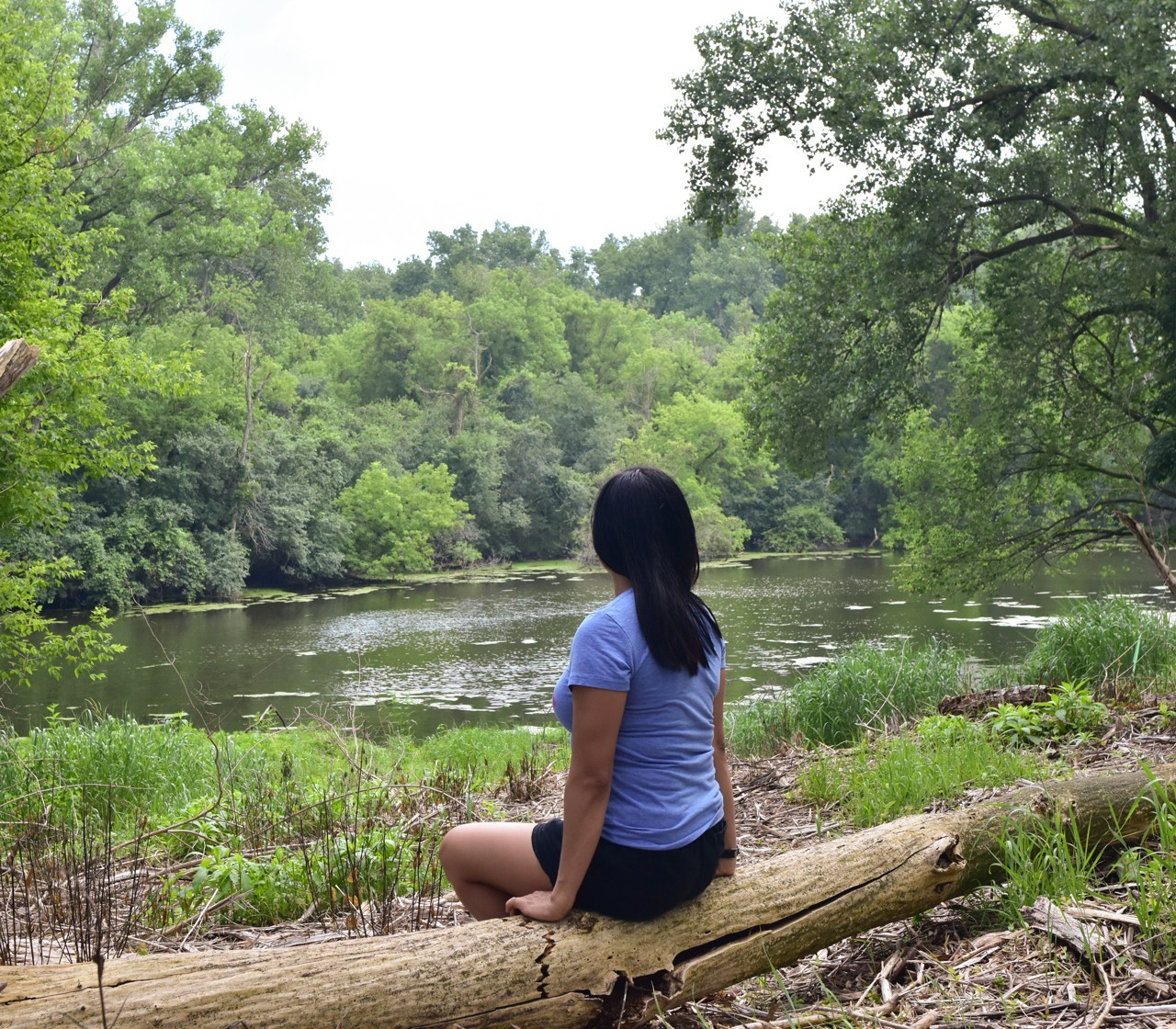 Exploring Skokie Lagoons, Illinois