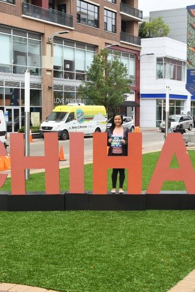 Chicago Half Marathon 2019
