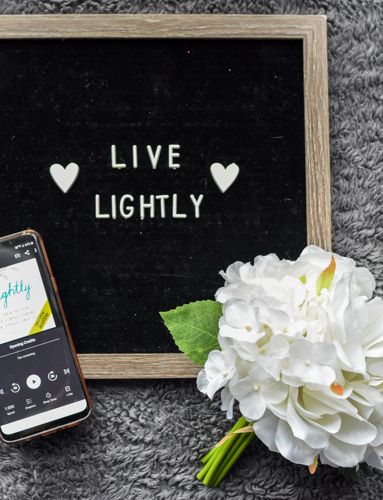 Simplifying Lessons From Lightly by Francine Jay