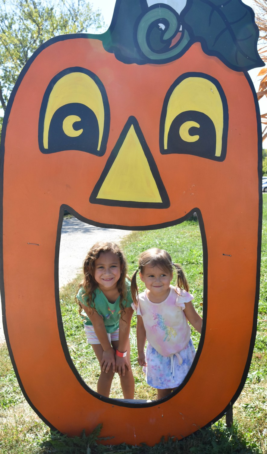 Family-friendly activities at Apple Holler farm near Chicago