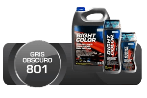 Gris Obscuro 801