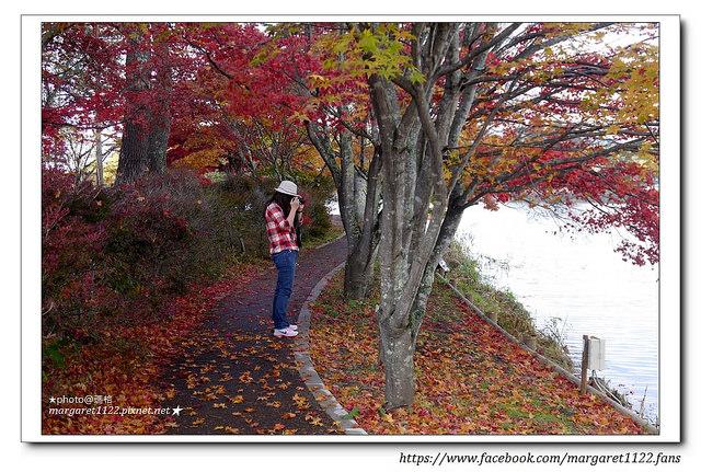 蓼科湖,秋季紅葉美景如詩如畫 日本長野秋之旅 – 瑪格。圖寫生活