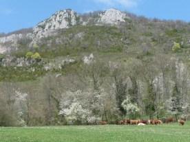 DolomitesApril18,2013 121