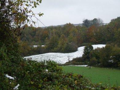 Snowy field, green field