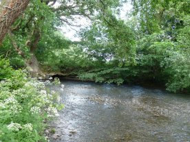 The River Lugg at the bottom of the garden.