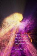 We choose our joys and sorrows long before we experience them. Kahlil Gibran Fractal Art Margaret Dill #wordsofwisdom #wordstoliveby #Fractalart #margaretdill