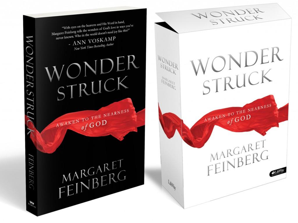 Wonderstruck Cover Art Image
