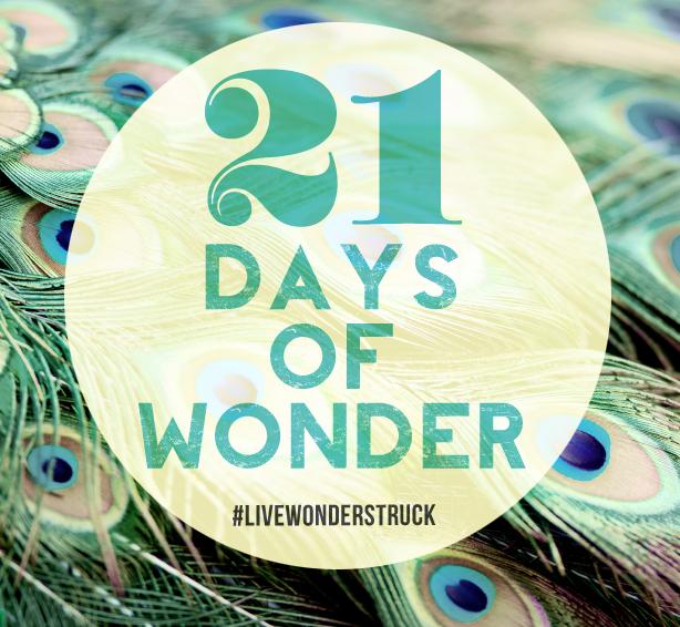 21 Days of Wonder