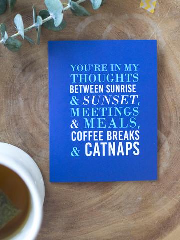 Catnaps_large