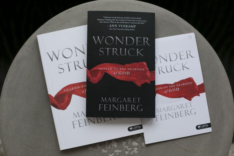 Wonderstruck Bible Study