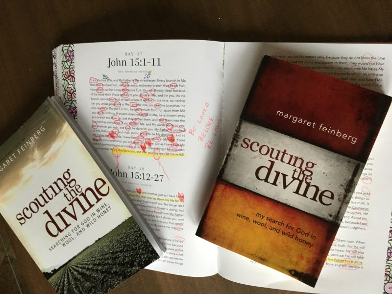 Scouting the divine bible study