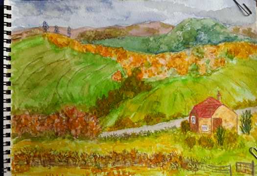 A watercolour sketch of a stretch of countryside. showing the autumn colours of the trees, hedgerows and fields. With a little house in the foreground of my finished drawing.