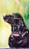 Lab Love  Watercolor  5x8 $125