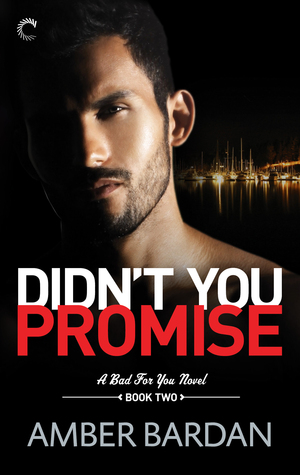 Didn't You Promise by Amber Bardan