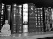 Detail from the author's bookcase
