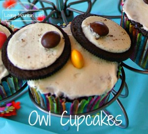 Owl Cupcake Closeup Loving Mountain Life