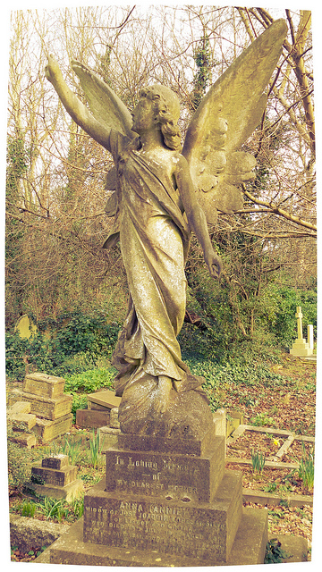 Highgate Cemetery London (angel) by Karen Bryan
