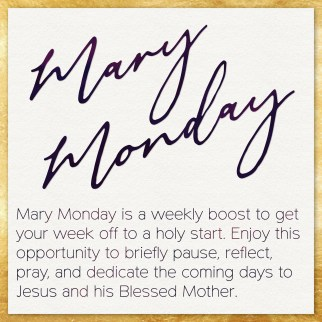 Mary Monday logo