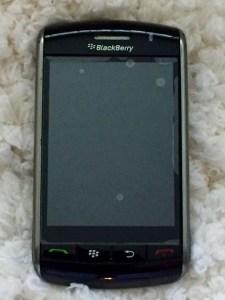 blackberry Photo by Margie Miklas