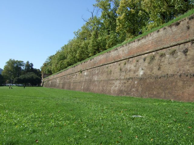 Lucca wall Photo by Margie Miklas