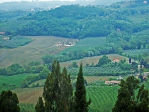 Tuscan countryside Photo by Margie Miklas