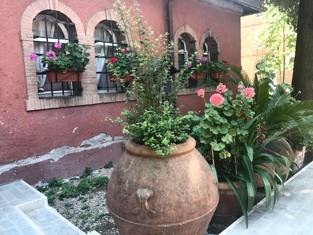Rome flowerpots Photo by Margie Miklas