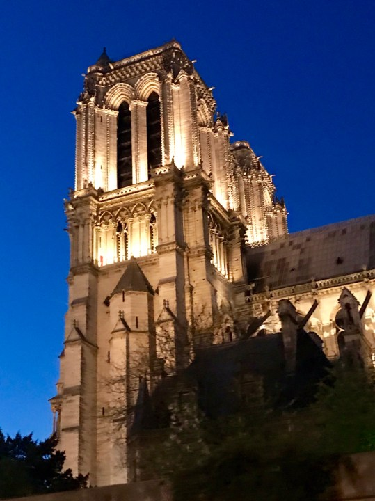 Impressions of Paris Notre Dame at night Photo by Margie Miklas