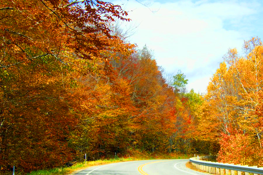 New England fall foliage Along the Kancamagus Scenic Byway in the White Mountains, NH
