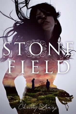 Stone Field by Christy Lenzi