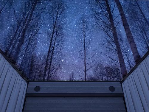 Image result for roof universe design