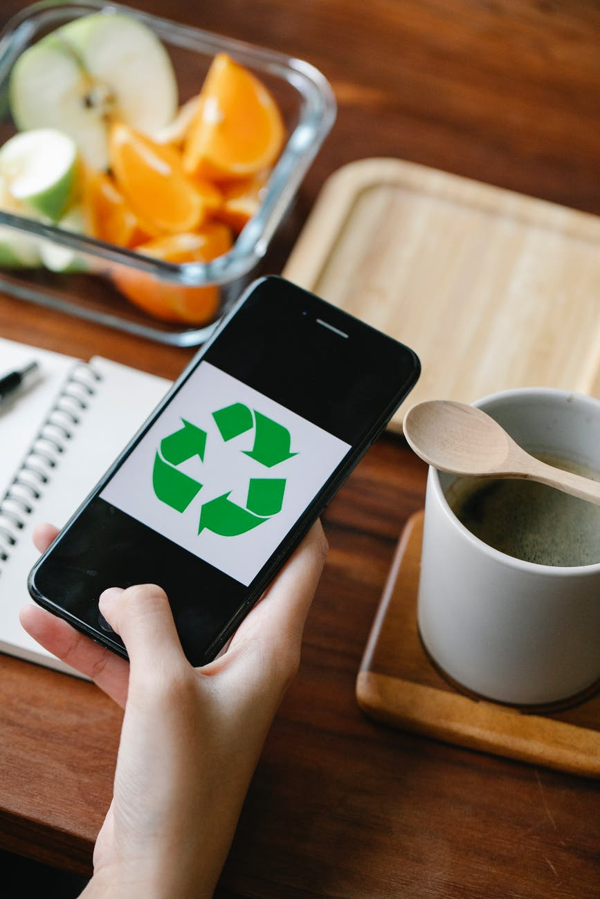 crop person with recycle symbol on smartphone
