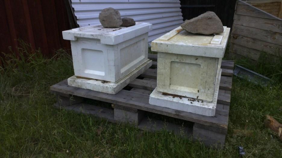 Die Bienenkästen